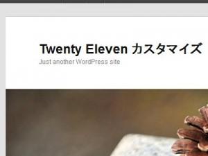 Twenty Elevenで上部の余白削除前